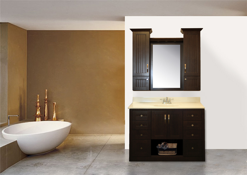 Alexa 2 48 Bathroom Vanity Scarborough Toronto Markham Pickering Ajax Whitby